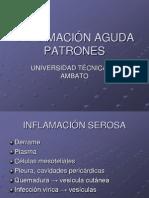 INFLAMACIÓN AGUDA PATRONES_1