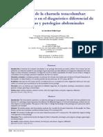 síndromedelacharnelajunio2011