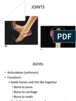 Joints- anatomy lecture