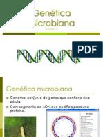 °GeneticaMicrobiana12-2