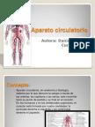 Aparato circulatorio diapositiva