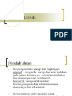 faal metabolisme