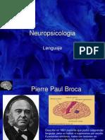 Neuro Psicologia Lengua Je