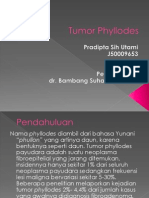 Ppt Tumor Phyllodes