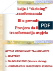 10 - Deseti Termin Skrining Transformanat + PCR