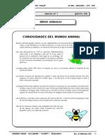 5to. año - BIOL - Guía 7 - Reino Animalia