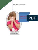 ejemplos de material para divulgar la higiene del sistema respiratorio