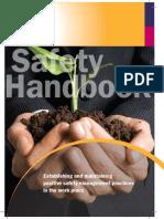 2009 Ifa Safetyhandbook