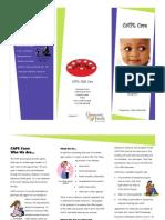 CAPE Brochure