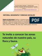 Flora y Fauna Zonas de Chile