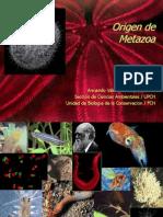 AV Origen Metazoa BIO 3