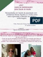 2012 2 Aula Renal 2 - Problemas Renais Agudos 11 12 2012 Ppt