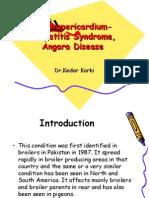 Hydropericardium-Hepatitis Syndrome, Angara Disease