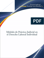 Practica Laboral Individual