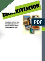 biolixiviacionolixiviacionbacteriana-121128232351-phpapp01