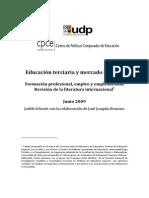 Educacion Terciaria y Mercado Laboral
