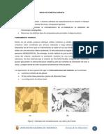 Informe de Metalografia
