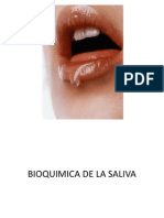 Clase 14 Bioquimica de La Saliva