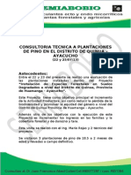 Consultoria Tecnica a Plantaciones de Pino en El Distrito de Quinua