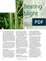 Rice Today Vol. 12, No. 4 Beating Blight