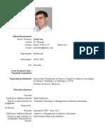 CV Completat
