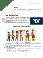 A.1.1 - Ficha Informativa - As Primeiras Sociedades Recolectoras