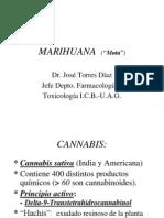 Marihuana 20265