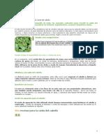 Remedios Naturales Para La Caida Del Cabello(1)
