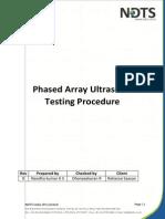 PAUT Model Procedure.pdf