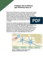 Different Strategies Aim to Reduce Brain Damage Following Injury  Stroke