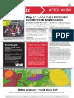 131004_Köp en udda hoj i klassiska cykelstaden Köpenhamn