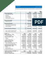 RisCo Raport Cash Flow