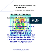 PLAN DE TRABAJO  P VICUÑA