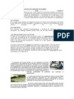 Proyecto Educativo de Huertos Escolare1
