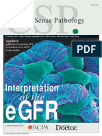 Interpretation of the eGFR Jul 07
