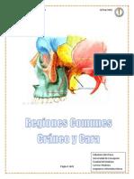 Regiones comunes
