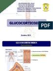 GLUCOCORTICOIDES OCTUBRE 2013