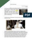 Síntesis de Ferroceno