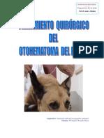 otohematoma1 (1).pdf