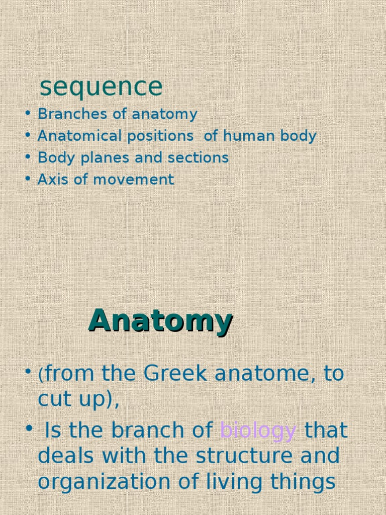 Branches of Anatomy by dr iram iqbal | Anatomical Terms Of Location ...