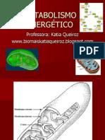 metabolismoenergtico-100509214926-phpapp02