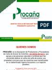 Presentacion Del Sector (1)