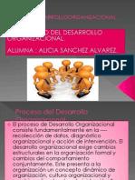 Proceso Del Desarrollo Organizacional