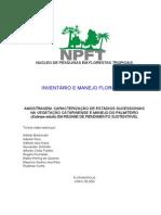Apostila_curso_inventarioNPFT[1]