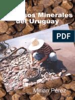 15 Mirian Perez_Recursos Minerales Del Uruguay