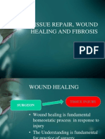 Tissue Repair, Wound Healing and Fibrosis