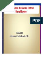 08 Seleccion SIL [Compatibility Mode]