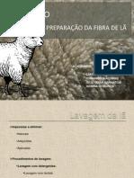 Slide Seminário Preparação da fibra de lã.ppt