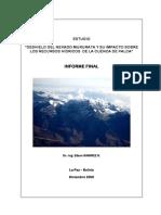 Informe Final Estudio Hidroglaciologico Cuenca Palca opt.pdf