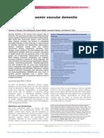 Subcortical ischaemic vascular dementia Romn